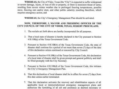 Declaration Of Local Disaster 2/14/2021